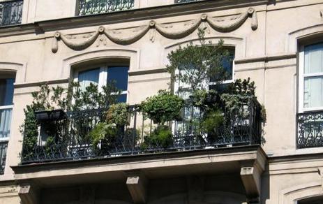 Paris remet au goût du jour le concours de balcons fleuris | Agriculture urbaine, architecture et urbanisme durable | Scoop.it