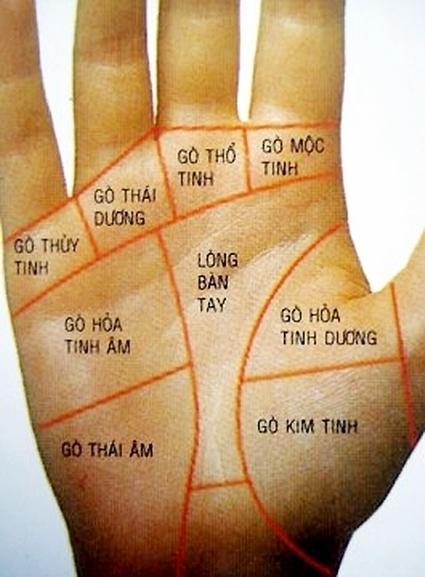 Dấu hiệu ở lòng bàn tay chứng tỏ bạn sắp phát tài   bong da   Scoop.it