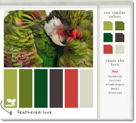 Buscar paletas de colores en Design Seeds | Sitios y herramientas de interés general | Scoop.it