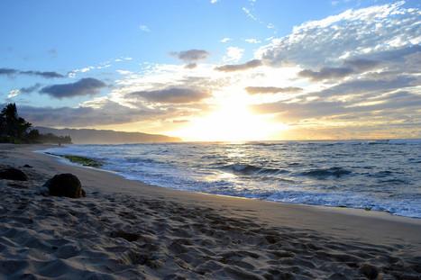 North Shore   ❀ hawaiibuzz ❀   Scoop.it
