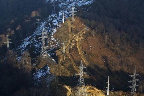 Sotchi : la biodiversité du Caucase passée par neige et profits | EntomoNews | Scoop.it
