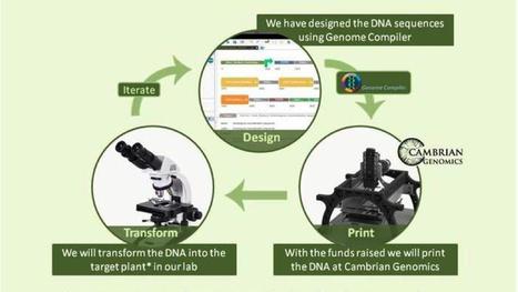 Make your own DNA - io9 - io9   Molecular Biology Demystified   Scoop.it