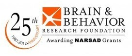 Brain & Behavior Research Foundation Announces 10 Major Research Achievements of 2012 | Social Foraging | Scoop.it