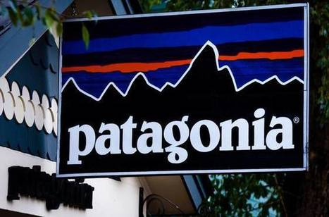 Patagonia will donate 100% of Black Friday sales to environmental groups | The EcoPlum Daily | Scoop.it
