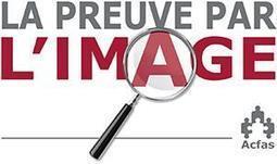 Eurêka! Canada: La période de vote pour le concours La preuve par l'image est déjà en cours! Les finalistes ont été sélectionnés et vous pouvez maintenant voter pour votre image préférée. | La recherche dans les cégeps | Scoop.it