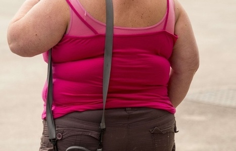 Discriminations: Pourquoi est-il plus difficile de trouver et de garder un travail quand on est gros? | Diversité - Egalité - Handicap | Scoop.it