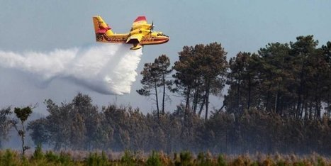 Salaunes (33) : 2 hectares de pins brûlés ce jeudi | Sainte-Hélène de la Lande Médoquine 33480 scooped by Raymond PIOMBINO | Scoop.it