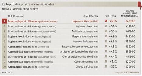 Coup d'arrêt pour les salaires des cadres en 2013 I Christine Lagoutte | Entretiens Professionnels | Scoop.it