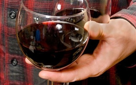 Revealed: How to lose weight - drink plenty of red wine | Weight Loss Scoops | Scoop.it