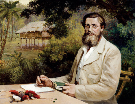 Alfred Russel Wallace: A very rare specimen - life - 07 November 2013 - New Scientist | Scientific Paranormal Research Organisation | Scoop.it