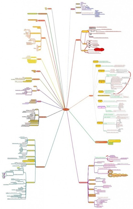 Freemind par l'exemple... | Mind-Mapping et cartes heuristiques | Scoop.it