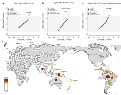 Genetic evidence for two founding populations of the Americas : Nature | MycorWeb Plant-Microbe Interactions | Scoop.it