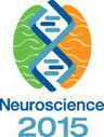 SynVivo Showcasing Blood-Brain Barrier Assay at Neuroscience 2015 in Chicago - Oct 18-21 | Stratech Scientific Ltd. | Scoop.it