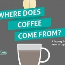Where does coffee come from? | Visual.ly | Geography of food | Scoop.it