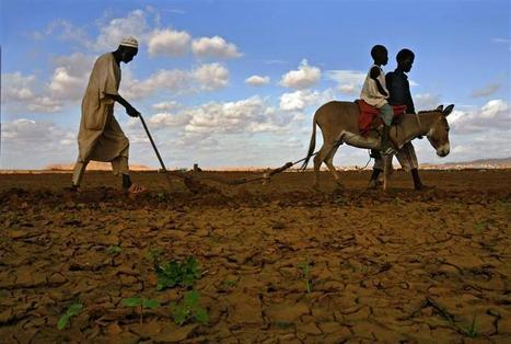 Twenty-First-Century Land Grabs: Accumulation by Agricultural Dispossession - Center for Research on Globalization | Sustain Our Earth | Scoop.it