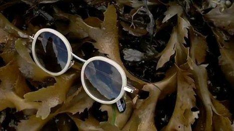 La vague des lunettes à base d'algues va déferler | Les algues en Bretagne | Scoop.it