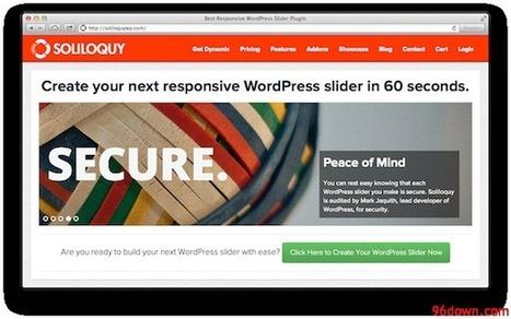 Soliloquy - Best Responsive WordPress Slider Plugin   Download Free Nulled Scripts   fsa   Scoop.it