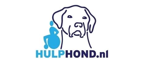 Hulp Hond zoekt gezinnen in Almere - DSZ Actueel | cazanshondencentrum | Scoop.it