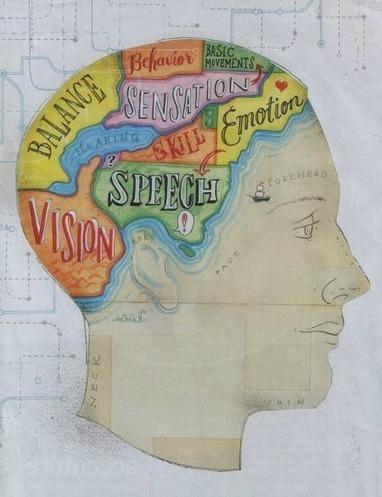 La nueva Ilustración Evolucionista / The new Evolutionary Enlightenment: La Evolución y el cerebro fragmentado   When mkt meet evolution   Scoop.it