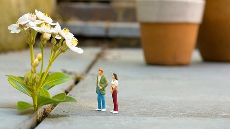 The Powerful Effect of Noticing Good Things at Work | Emotional Intelligence Quotient | Scoop.it