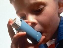 El 45% de los pacientes con asma ha sufrido al menos una exacerbación en el último año | COACHING Y ASMA | Scoop.it
