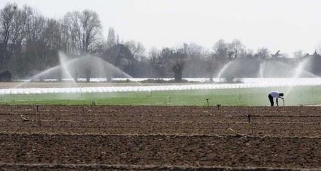 Les agences de l'eau vont devoir se serrer la ceinture   Sustain Our Earth   Scoop.it