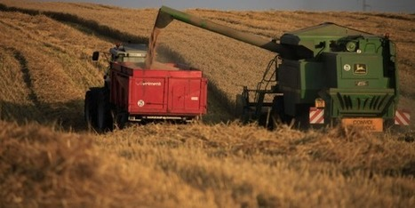 Les grandes coopératives agricoles, ces entreprises françaises en plein boom - La Tribune | L'œil de Dijon Céréales | Scoop.it