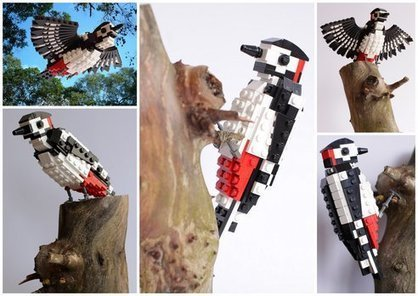 Gardener Hopes to Teach Kids About Birds Using LEGOs | Cool Finds | Scoop.it