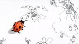 Sous le ciel des insectes | Biodiversité & Relations Homme - Nature - Environnement : Un Scoop.it du Muséum de Toulouse | Scoop.it