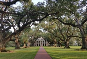 Tweet from @tammyleebradley | Oak Alley Plantation: Things to see! | Scoop.it