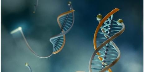 Un nanodétecteur qui éclaire littéralement les cellules cancéreuses | J'écris mon premier roman | Scoop.it