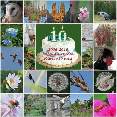 Le JardinOscope fête ses 10 ans | Les colocs du jardin | Scoop.it