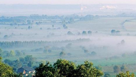 Cinq chiffres alarmants sur la préservation des milieux naturels en France | Agriculture- Environnement | Scoop.it