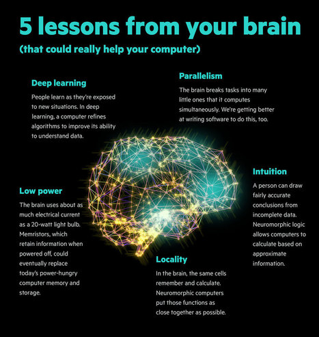 5-lessons-from-your-brain-l.jpg (1177x1239 pixels) | Infographics and Data Visualization | Scoop.it