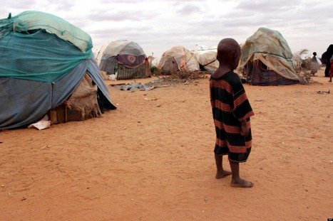 Human Climate Change Big Factor In Somali Famine | Climate Change + Food | Scoop.it