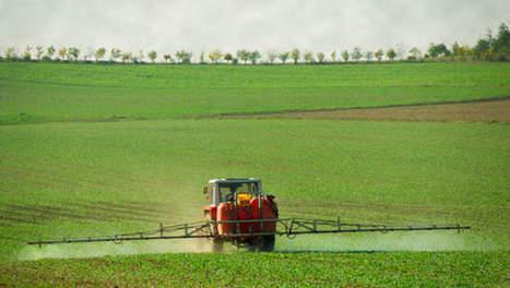 L'usage des pesticides a baissé de près de 6% en France en 2012 | Pesticides | Scoop.it