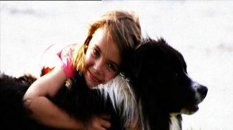 Dog Empathy - ABC TV Science | Empathy and Animals | Scoop.it