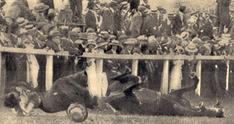 Emily Davison killed at the 1913 Derby   Suffragettes   Scoop.it