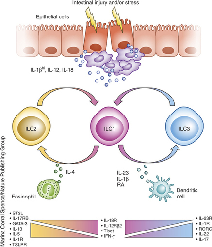 NK cells and type 1 innate lymphoid cells: partners in host defense : Nature Immunology : Nature Publishing Group | Cancer Immunotherapy Review | Scoop.it