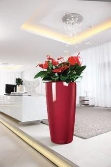 Lechuza Rondo | office plants | Scoop.it