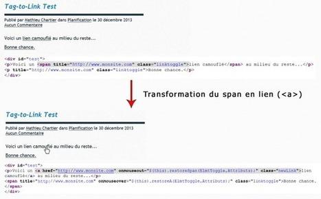 Tag-to-Link : extension WordPress pour le PageRank Sculpting - Blog Internet-Formation - Poitiers (86) | Développement et webdesign | Scoop.it