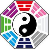 The Energy of Everything: QiGong | Wild Goose Qigong | Scoop.it