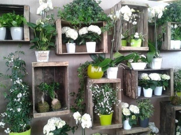 Green thérapie : 20 façons de végétaliser un mur | La Revue de Technitoit | Scoop.it