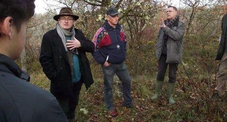 Ils veulent relancer  les fouilles à l'Impernal   Vallée du Lot et du Vignoble   Scoop.it