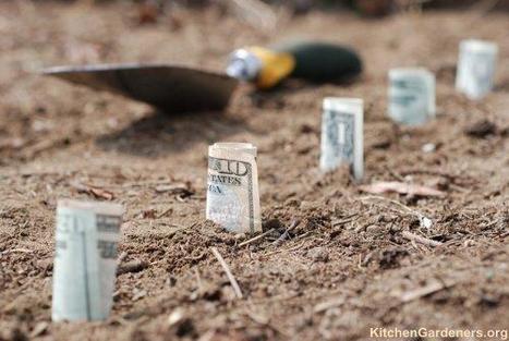 Une série de reportage brefs sur les monnaies complémentaires sur le mouv' | Prionomy | Scoop.it