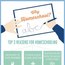 Why Homeschool: Top 3 Reasons for Homeschooling | Visual.ly | Homeschooling | Scoop.it