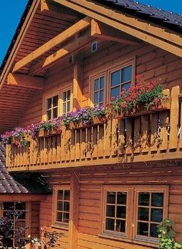 Dřevo a jeho ošetřování | Exteriéry a interiéry domů - vybavení | Scoop.it
