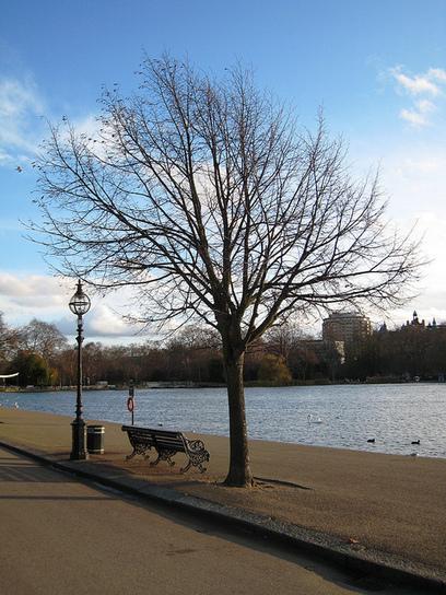 POINT D'OUÏE - Hyde Park - Londres | DESARTSONNANTS - CRÉATION SONORE ET ENVIRONNEMENT - ENVIRONMENTAL SOUND ART - PAYSAGES ET ECOLOGIE SONORE | Scoop.it