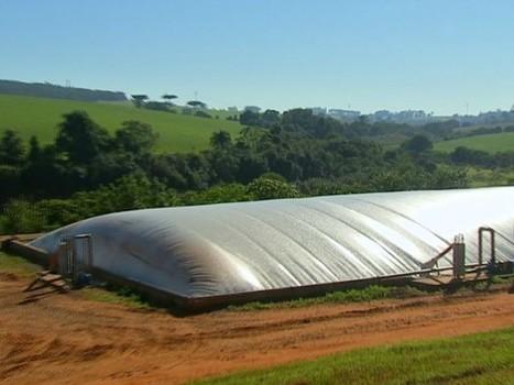 Tecnologia: fazendas investem na instalação de biodigestores - Globo.com   Com Scientiae   Scoop.it