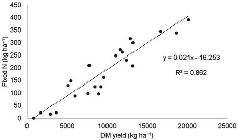Yield and nitrogen fixation potential from white lupine grown in rainfed Mediterranean environments | Plant-Microbe Symbiosis | Scoop.it